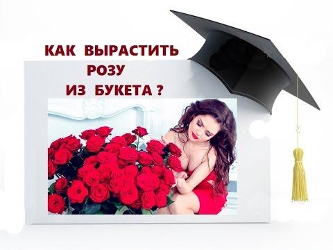 Заказать букет «Остров»из YouTube · С высокой четкостью · Длительность: 1 мин13 с  · Просмотров: 272 · отправлено: 25.01.2017 · кем отправлено: Flora2000.ru - доставка цветов