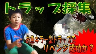 昆虫採集☆カブトムシ☆クワガタムシ トラップ採集リベンジに挑む!はたし...