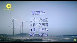 沈建豪 - 鴛鴦杯【官方完整版MV版】