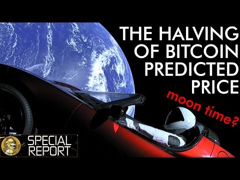 The Bitcoin Halving - Price Predictions - What To Expect?