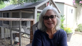 Homestead Tour   Small Space Gardening   Backyard Chickens