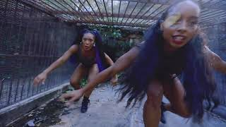 Tyrannosaurus Rex Video | Brown Girl Magic | Qimmah & Rehima