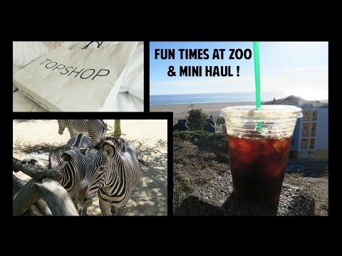 Fun Times at Zoo & Mini Haul! #jillsaikivlogs