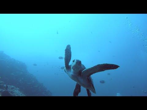 Galapagos Islands 2016 - GoPro