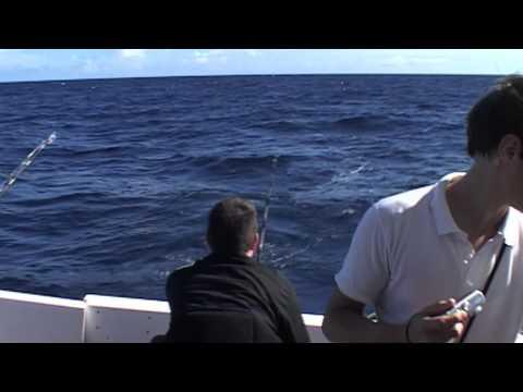 Billfish techniques | Indian Ocean