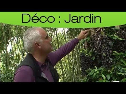 D Corer Son Jardin Pour Ses Animaux Auxiliaires Youtube