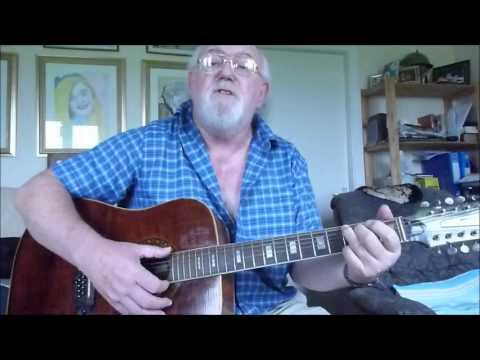 12 String Guitar Silver And Gold Vin Garbutt Including Lyrics