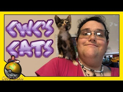 Chris Chan's Cats / CWCki Discussion