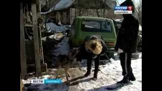 Вести-Хабаровск. Спор вокруг собаки