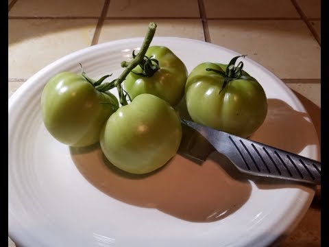 How I Cook Southern Fried Green Tomatoes!!