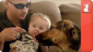 Healing Power of Pets: Marine finds comfort in service dog