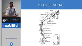 Periférico nervo dano reversível do o é