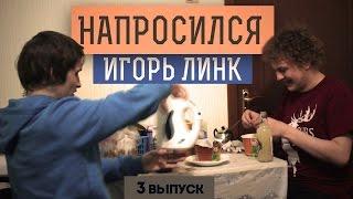 НАПРОСИЛСЯ: Игорь Линк