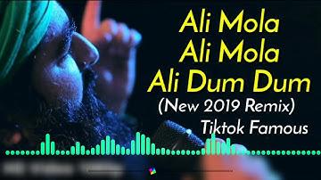 Ali Mola Ali Mola Ali Dam Dam Dj Remix   Dj Hard Bass Special Qawwali   Sultan Ul Qad