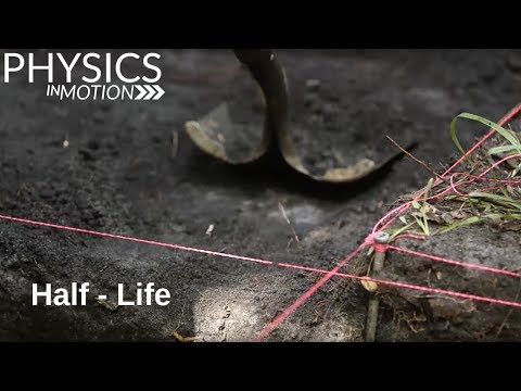 What Is A Half - Life? | Physics In Motion