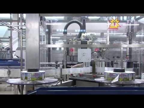 В Ядрине открылся новый завод по переработке молока мощностью 200 тонн в сутки