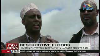 Number of livestock swept away by floods in Marsabit rises to 7,000