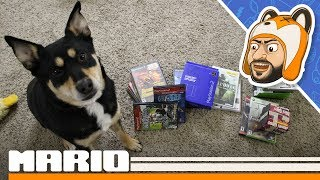 Thrifty Gaming Pickups: Phat PS2 Vertical Stand, PS2 Game Haul, and an Import! - Episode 17