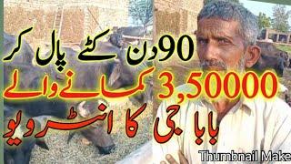 katta farming in Pakistan / katta farming / how to start katta farm