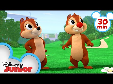 Download Nutty Tales 30 Minute Compilation! | Chip 'N Dale's Nutty Tales | Disney Junior