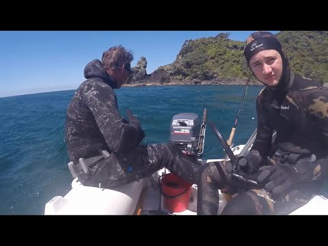 Diving Fishing And Camping (Coromandel)