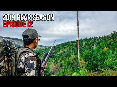 So Many Bears! - Washington Fall Bear Hunt | 2019 Hunting Season EP.12