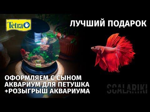 Аквариум Tetra Duo Waterfall Globe – лучший подарок / аквариум для ребенка + розыгрыш аквариума