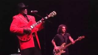 Скачать Big Bill Morganfield I M A Man
