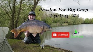Passion For Big Carp Fenlands Willow Spring #1