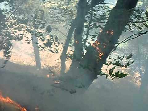 Wildfire, Shahdag National Park
