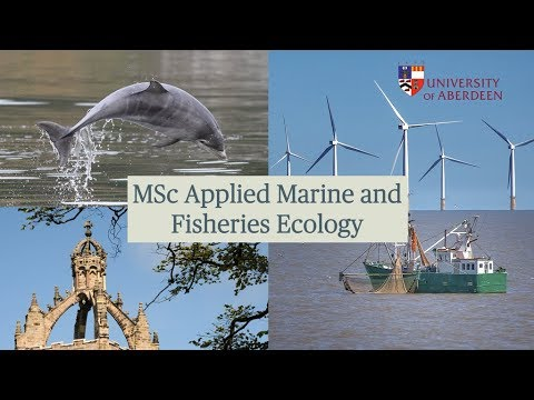 MSc Applied Marine and Fisheries Ecology
