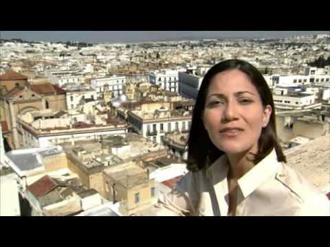 How Facebook Changed the World -- the story of the Arab Spring  episode 1