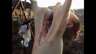 Как правильно разделать свинью(, 2014-03-23T16:35:12.000Z)