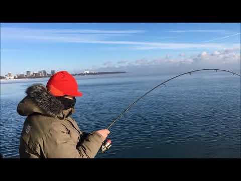 Milwaukee Harbor Steelhead - New PB - Full HD