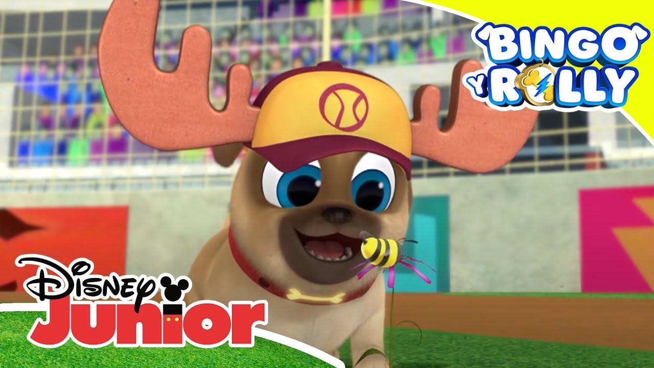 Bingo y Rolly: Hora de jugar al beisbol | Disney Junior Oficial