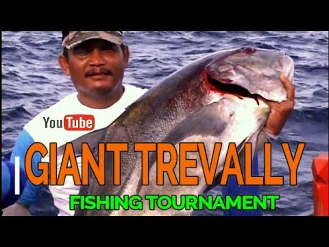 Fishing Turnament Banda Aceh Dinas Pariwisata dan Kebudayaan