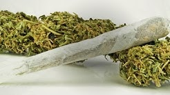 Marijuana laws challenging workplace drug testing