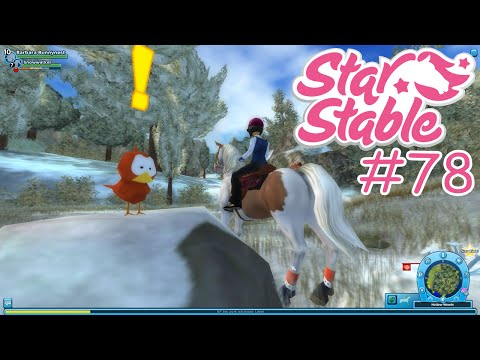 STAR STABLE #78 - Ich hab nen Vogel ☼ Let's Play Star Stable [HD]