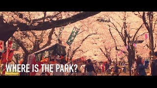 大宮公園 vol 26 by DJI OSMO JAPAN thumbnail