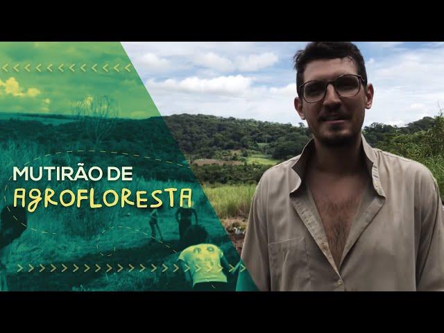 MUTIRÃO DE AGROFLORESTA, adubação verde e bananas // PorQueNão? na Prática