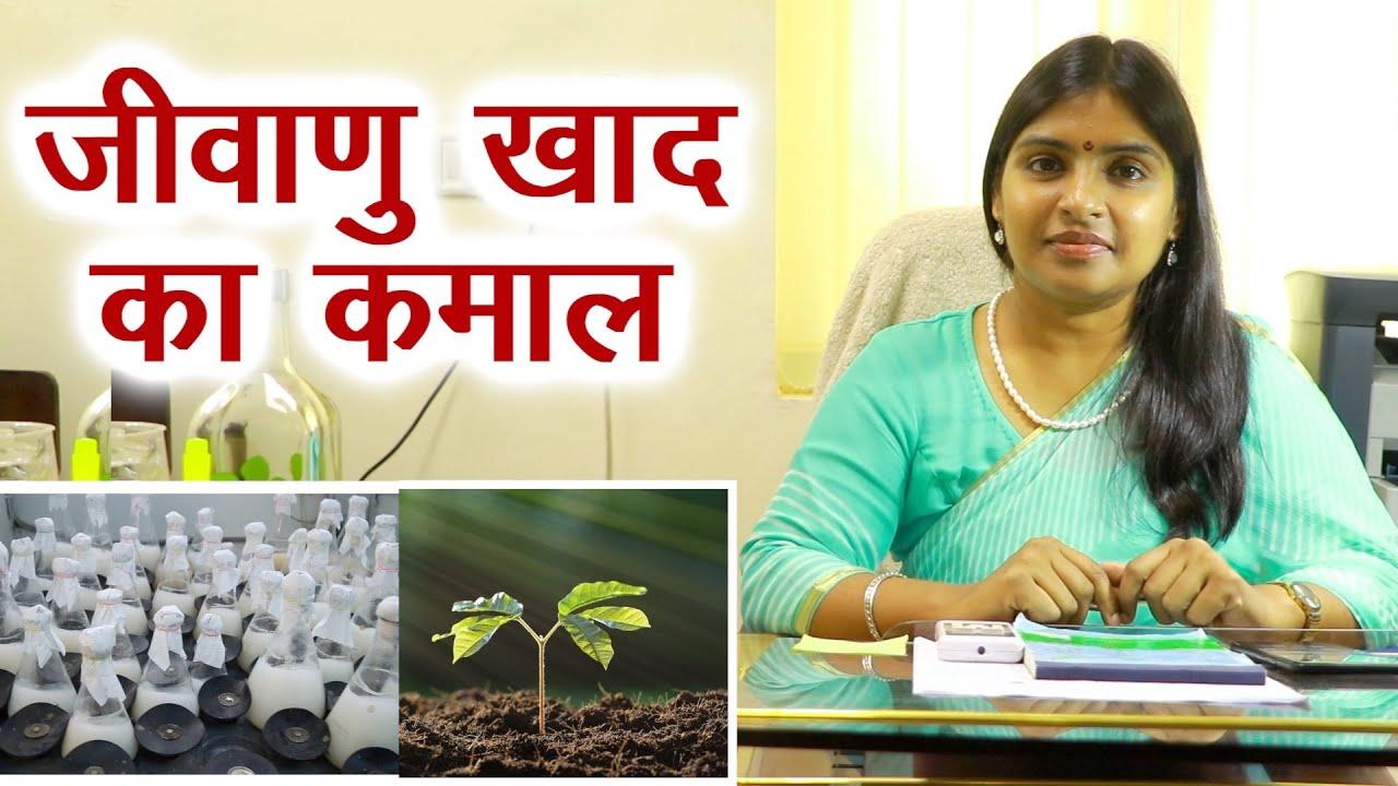 पूसा साइंटिस्ट डॉ.सीमा ने बताए जैव उर्वरक के कमाल  Bio fertilizer for High Yield    Organic Farming