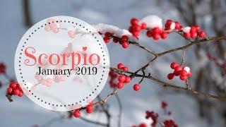Scorpio ~ DIVINE PARTNERSHIP  ~ January 2019 Tarot Card Reading