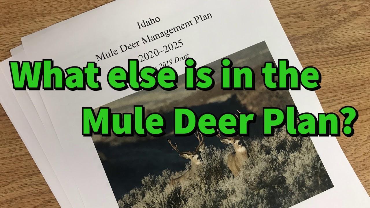 Idaho - Deer Friendly