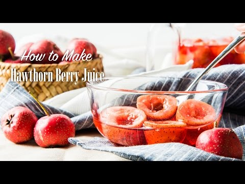 how-to-make-hawthorn-berry-juice-recipe-红果捞