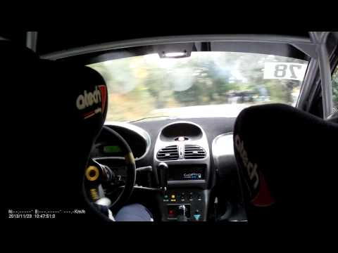 rally var 2013 206 rc groupe A Botticini/Seux Collobrières ES4