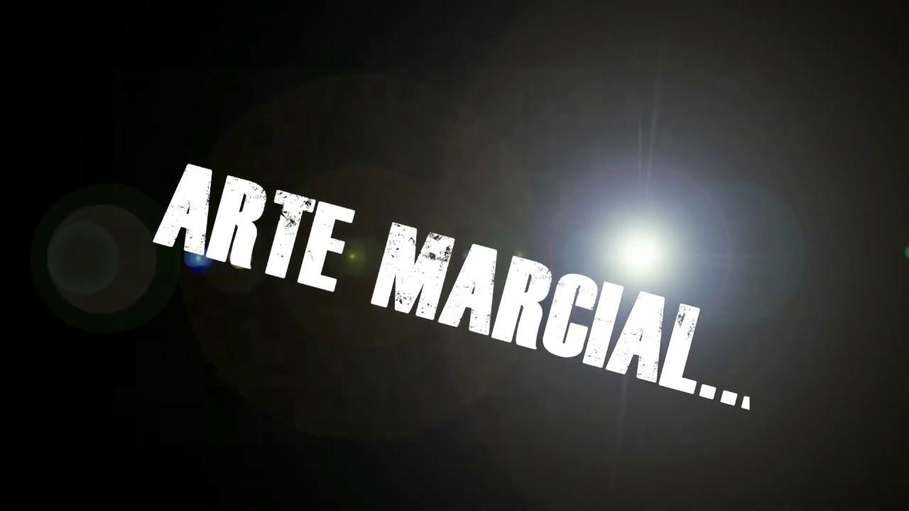 "Karate Tradicional   Vs   ""Karate Deportivo"""