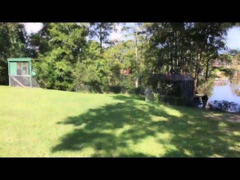 Live Stream Solar Eclypse Monroe Louisiana 2017