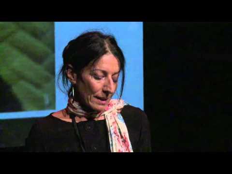 Healing through storytelling: Paula Abood at TEDxParramatta