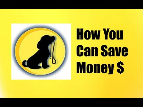 How Much Does Dog Training Cost - You Need To Know How Much You Can Expect to Spend