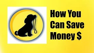 How Much Does Dog Training Cost$ - You Need To Know How Much You Can Expect To Spend$